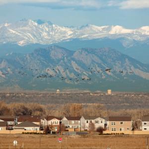 Northern Colorado Roofer